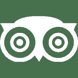 Trip Advisor Owl