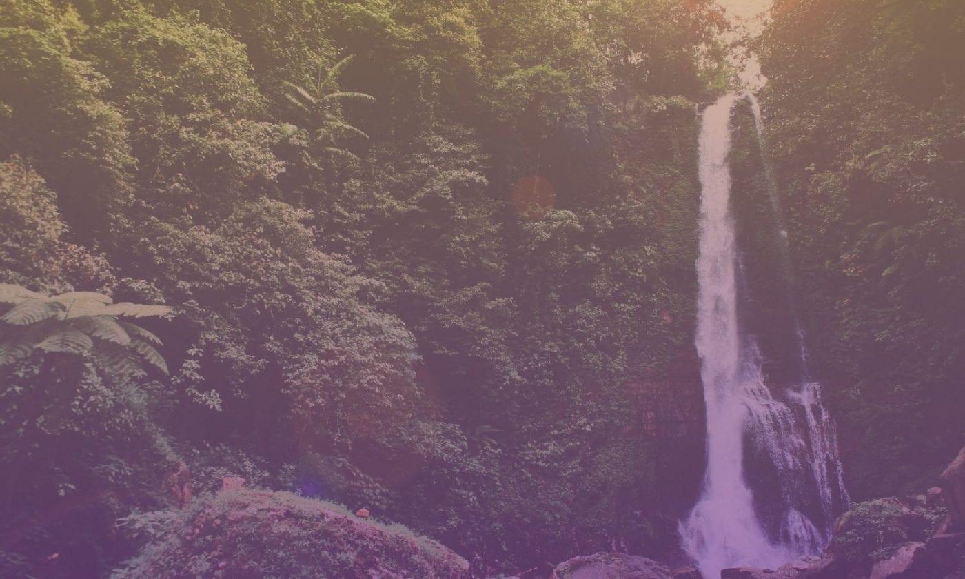Bliss Sanctuary For Women - Bali Retreat