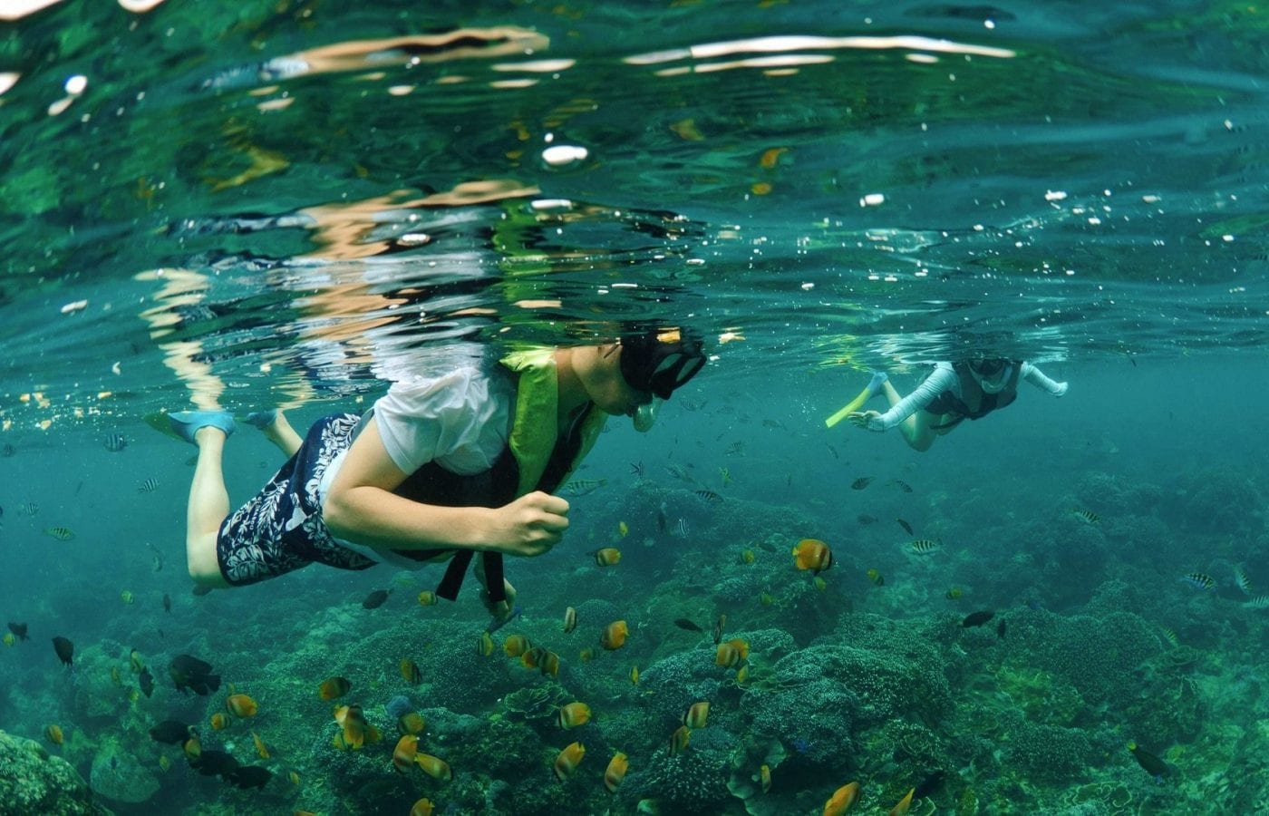Water Lover Package Bliss Sanctuary Bali - Snorkelling