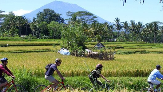 Thrill seeker package Eco Bike Tour through rice fields experiencing the real Bali a little slower