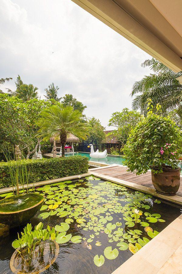 Luxury outdoor pond area, Bali retreats, Bliss Sanctuary For Women, New Canggu Sanctuary,