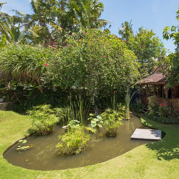 Beautiful pond outside private bedroom verandah in Bali retreat, Luxury Double Joglo Room, Bliss Sanctuary For Women, Canggu