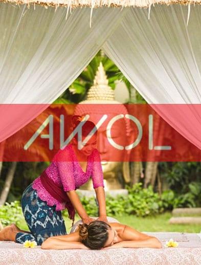 AWOL website logo