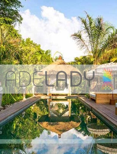 Adelady website logo