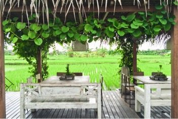 Nook Restaurant in Canggu Bali