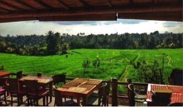 Sari Organik Restaurant in Ubud Bali