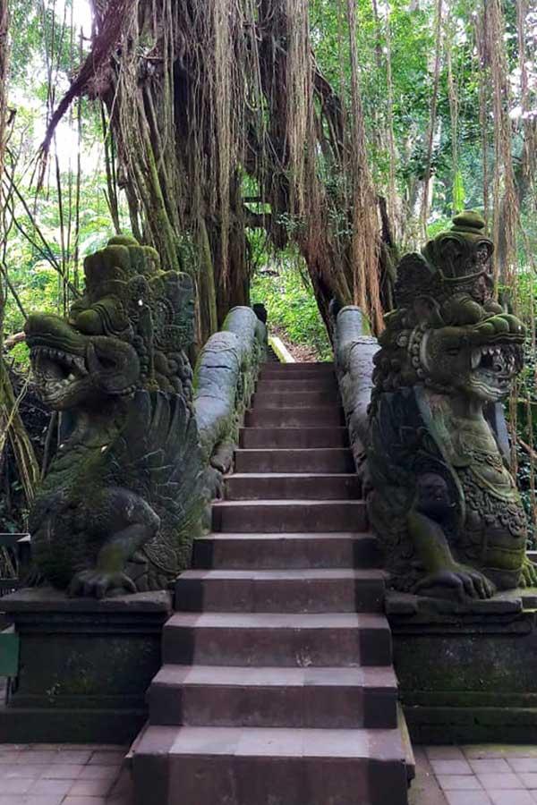 Ubud Monkey Forest Bali sightseeing