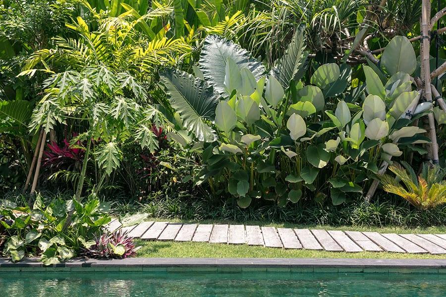 Gorgeous garden Ubud Bali resort