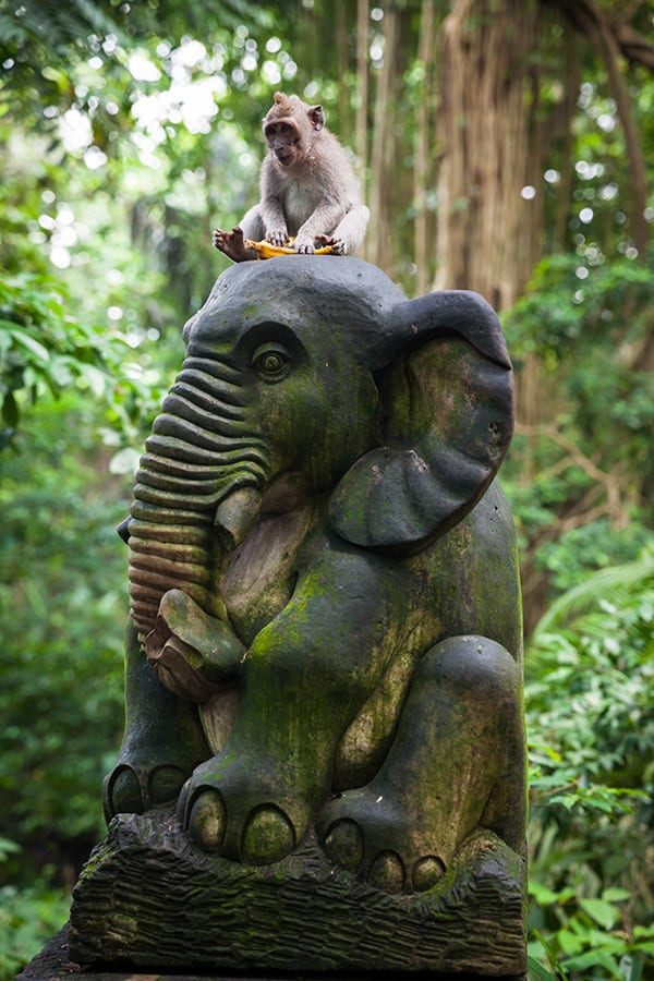 monkey on elephant statue Ubud Monkey Forest, Bali