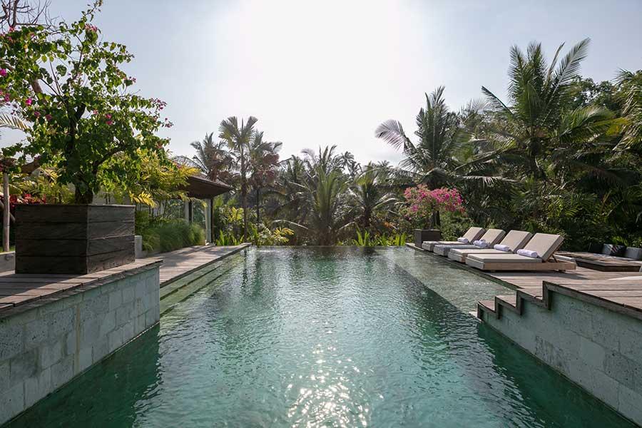 Stunning infinity pool Bali Ubud accomodation