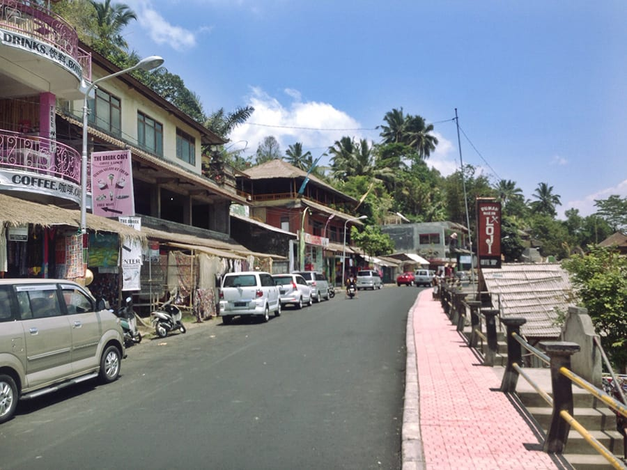 Ubud street Bali retreat