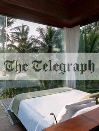 The Telegraph website logo