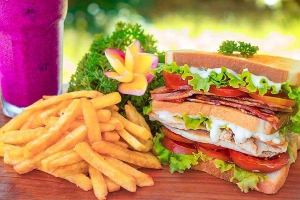 Club sandwich Bliss Bali retreat