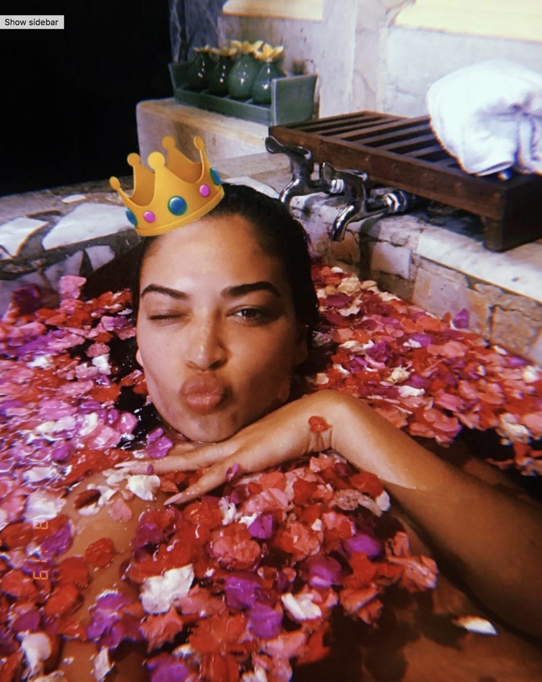 Shanina Shaik was pictured pouting among the petals. Credit: Instagram